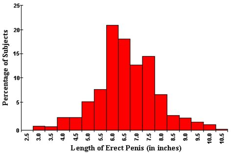 Penis enlargement overview gif 452x308